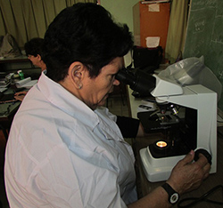 Sanz at Microscope